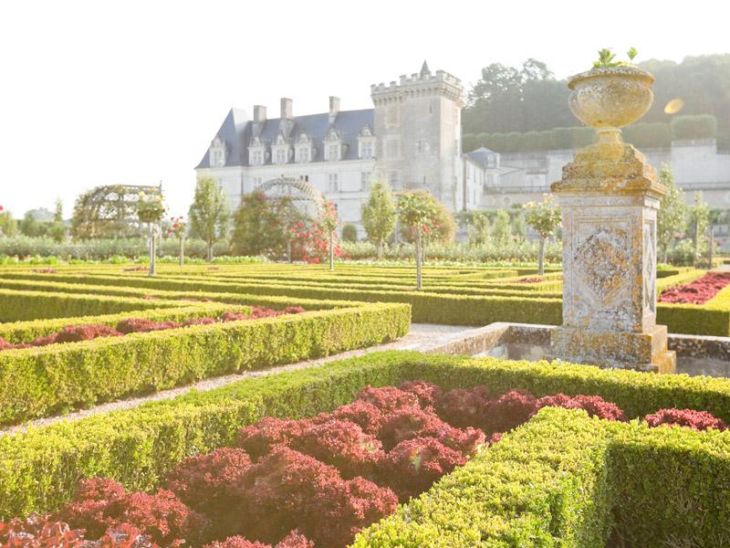 Location château de Villandry