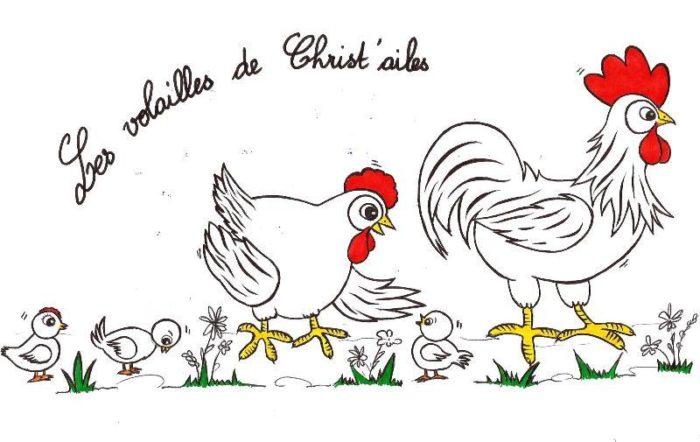 logo-les-volailles-de-christ-ailes